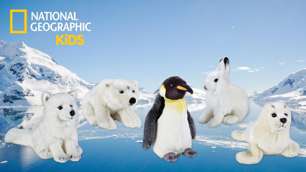 Plüsch_Arktis.jpg
