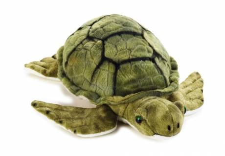 Tortue en peluche GÉOGRAPHIQUE NATIONALE
