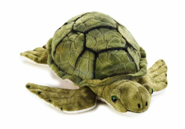 NATIONAL GEOGRAPHIC Plush-Turtoon Turtle