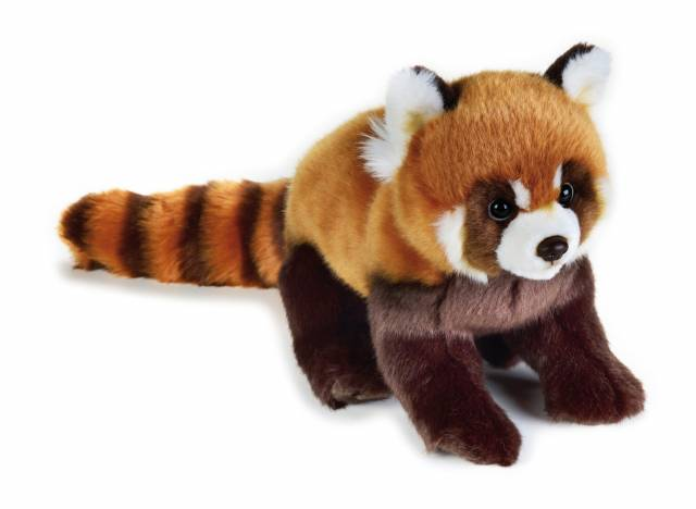 Panda rouge en peluche NATIONAL GEOGRAPHIC