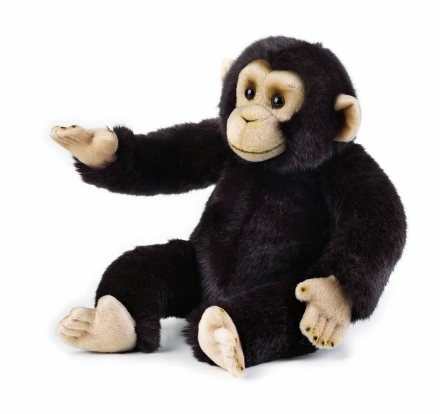 Chimpanzé en peluche NATIONAL GEOGRAPHIC