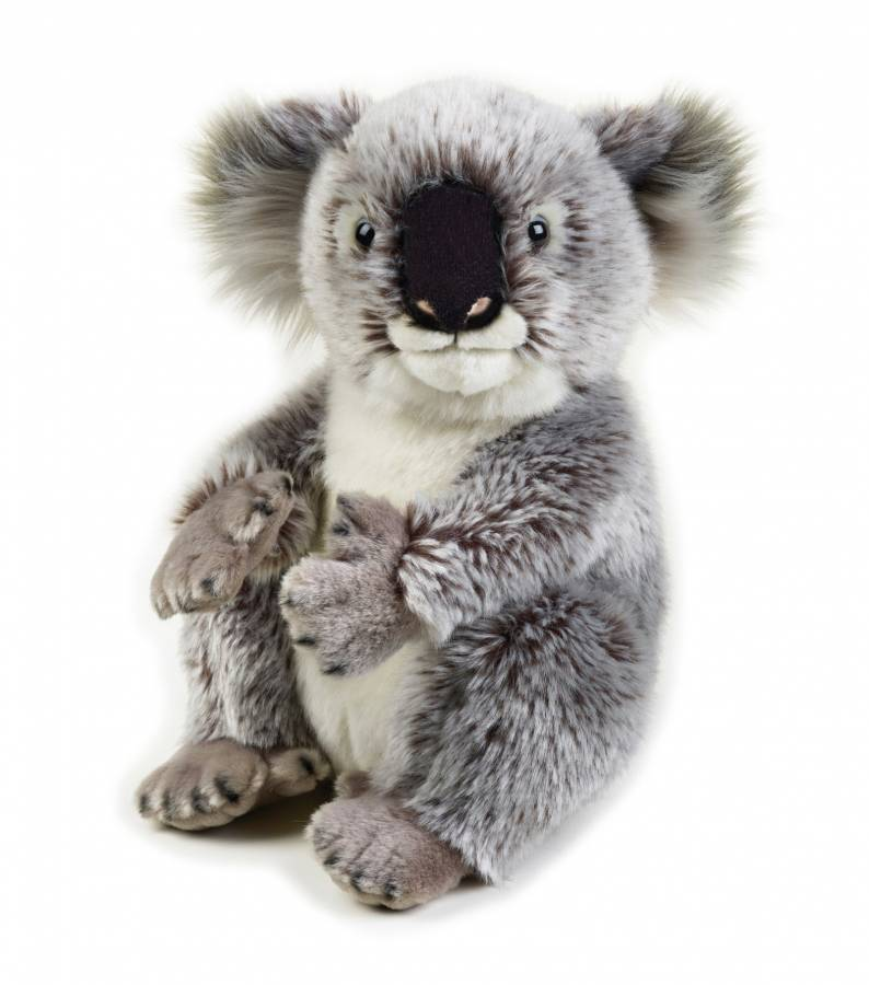 Koala en peluche NATIONAL GEOGRAPHIC