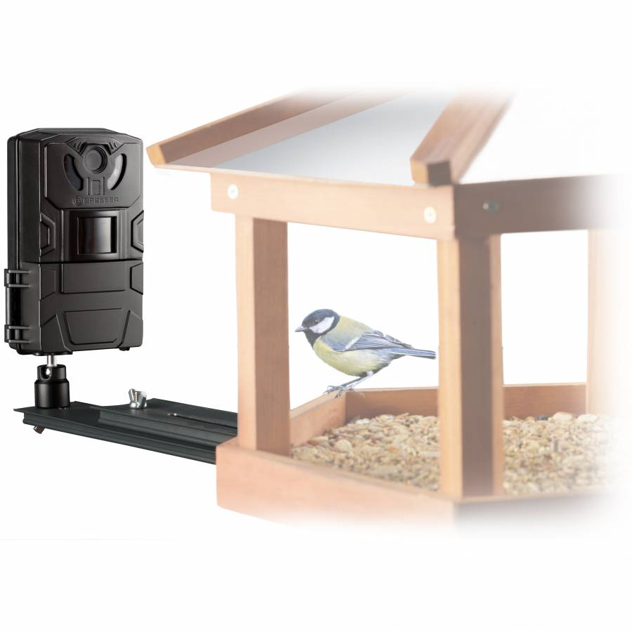 Bird/Small Animal-Camera SFC-1